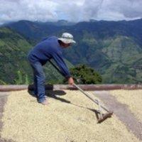 コロンビア【ラ・マヌエラ農園】深煎り 200g